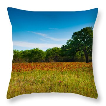 Texas Hill Country Meadow Throw Pillow