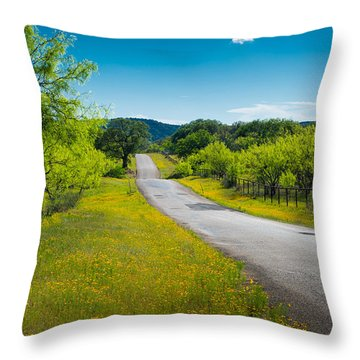 Texas Hill Country Road Throw Pillow