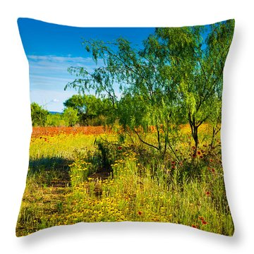 Texas Hill Country Wildflowers Throw Pillow by Darryl Dalton