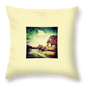 Texas Hwy 29 Throw Pillow