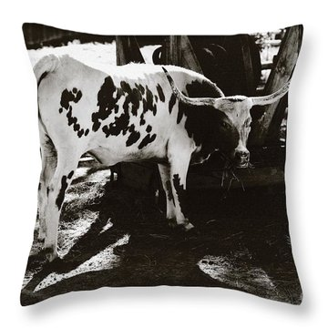 Texas Longhorn Throw Pillow by Liane Wright