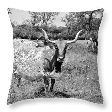 Texas Longhorns A Texas Icon Throw Pillow by Christine Till
