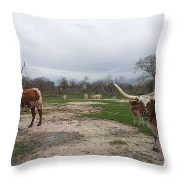 Texas Longhorns Throw Pillow by Shawn Marlow