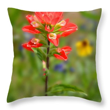 Texas Red Indian Paintbrush Throw Pillow by Lynn Bauer