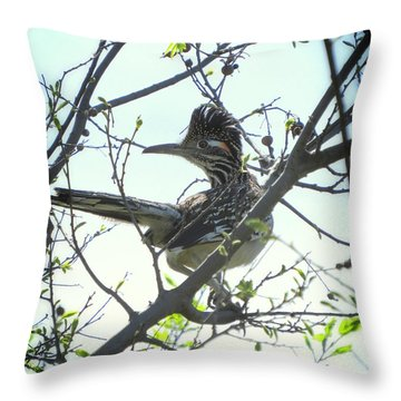 Texas Roadrunner Throw Pillow