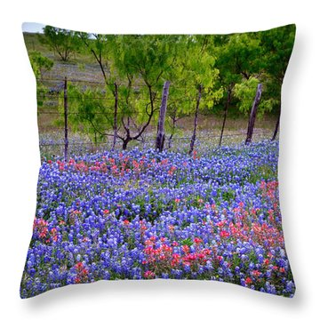 Throw Pillow featuring the photograph Texas Roadside Heaven -bluebonnets Paintbrush Wildflowers Landscape by Jon Holiday