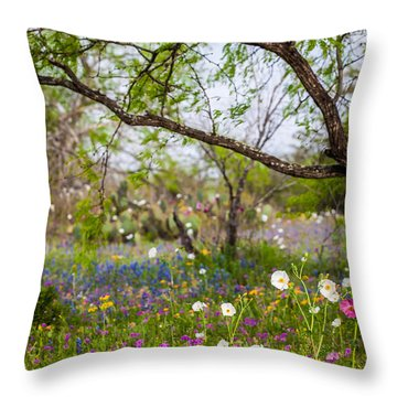 Texas Roadside Wildflowers 732 Throw Pillow by Melinda Ledsome