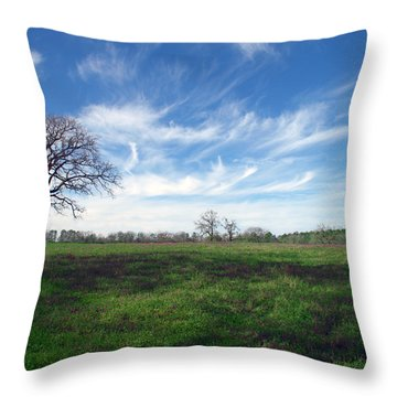 Texas Sky Throw Pillow by Brian Harig