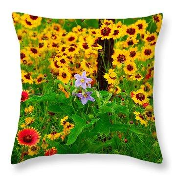 Texas Spring Delight Throw Pillow