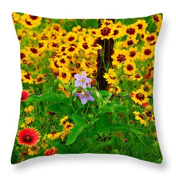 Texas Spring Delight Throw Pillow