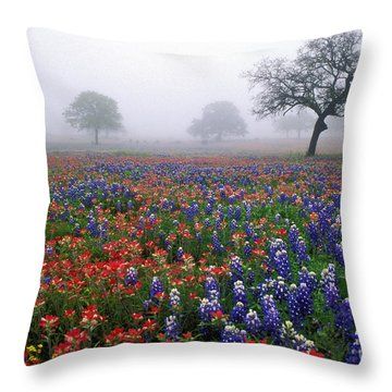 Texas Spring - Fs000559 Throw Pillow