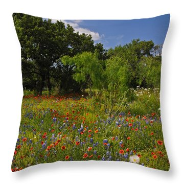 Texas Spring Spectacular Throw Pillow