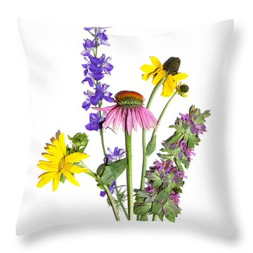 Texas Summer Throw Pillow