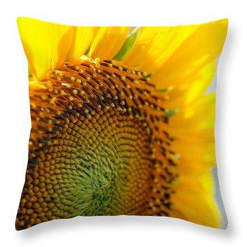 Texas Sunflower Throw Pillow by Debi Demetrion