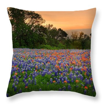 Texas Sunset - Bluebonnet Landscape Wildflowers Throw Pillow by Jon Holiday