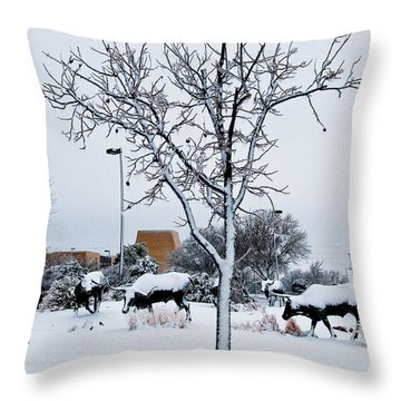 Throw Pillow featuring the photograph Heritage Grounds by Mae Wertz