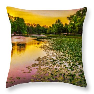 Throw Pillow featuring the photograph Texas Textured Sunset by Ken Stanback