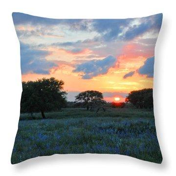 Texas Wildflower Sunset  Throw Pillow