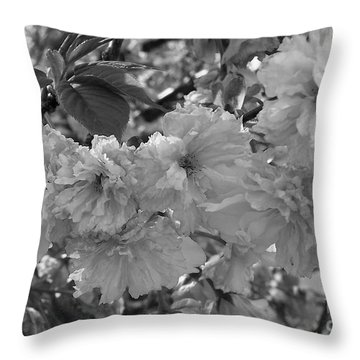 Throw Pillow featuring the photograph Textured Black And White Cherry Blossoms by Gena Weiser