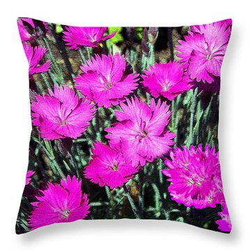 Throw Pillow featuring the photograph Textured Pink Daisies by Gena Weiser
