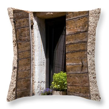 Textured Shutters Throw Pillow by Bob Phillips
