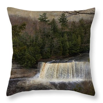 Textured Tahquamenon River Michigan Throw Pillow