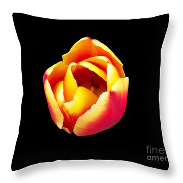 Throw Pillow featuring the photograph Textured Yellow And Pink Tulip by Gena Weiser