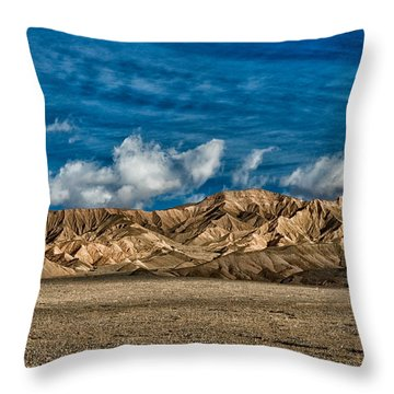 Textures Throw Pillow by Cat Connor