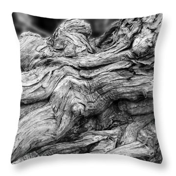 Textures Of Nature Black And White Throw Pillow by Jack Zulli