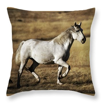 Throw Pillow featuring the photograph That Golden Hour D3550 by Wes and Dotty Weber