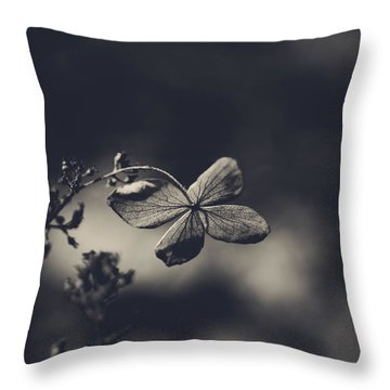 That Special Warmth Throw Pillow by Laurie Search