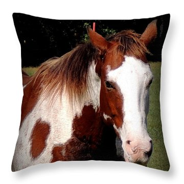 Thats What I Think Throw Pillow