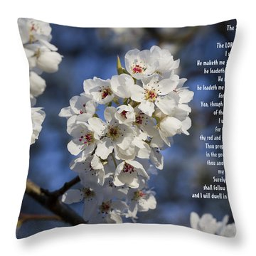 The 23rd Psalms Throw Pillow by Kathy Clark