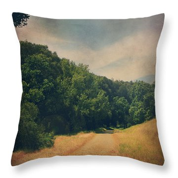 The Adventure Begins Throw Pillow by Laurie Search