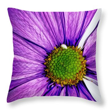 The Allure Of A Daisy Throw Pillow