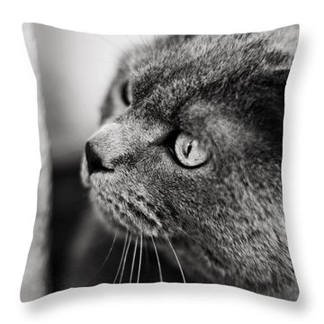 The Ambush Throw Pillow by Laura Melis