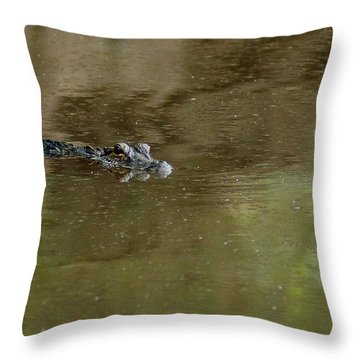The American Alligator In The Flint River Throw Pillow by Kim Pate
