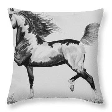 The American Saddlebred - Framed Pinto Throw Pillow by Cheryl Poland