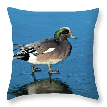 Penelope Throw Pillows