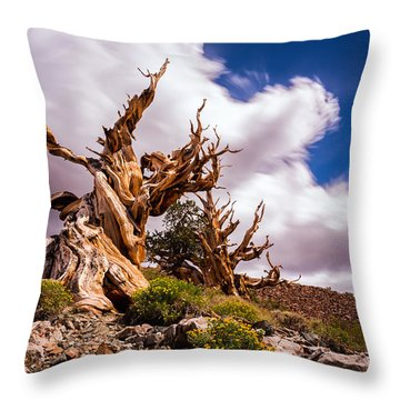 The Ancient Ones Throw Pillow by Tassanee Angiolillo