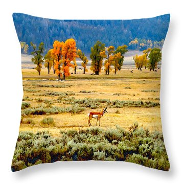 The Antelope's Palace			 Throw Pillow by Ann Johndro-Collins