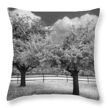 The Apple Orchard Throw Pillow by Debra and Dave Vanderlaan