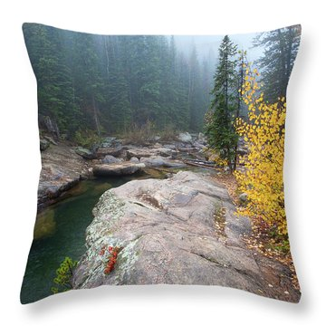 The Aquaduct Throw Pillow by Jim Garrison