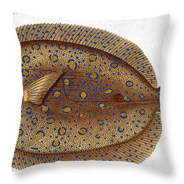 The Argus Flounder Throw Pillow by Andreas Ludwig Kruger