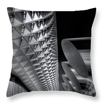 The Armadillo Awakes Throw Pillow