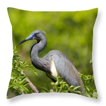 The Art Of Focus Throw Pillow