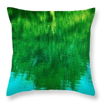 Art Of Nature Throw Pillow by Kellice Swaggerty