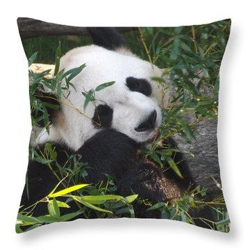 The Art Of Posing At Breakfast Throw Pillow by Lingfai Leung