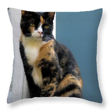 The Art Of Watching Throw Pillow