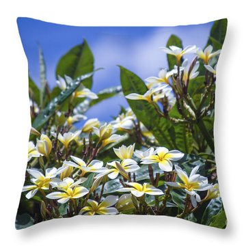 The Ascetic Dimension Throw Pillow by Sharon Mau